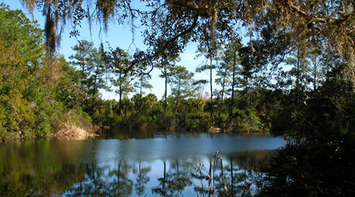 The beauty of Wekiwa Springs State Park lures visitors to a closer experience of nature.