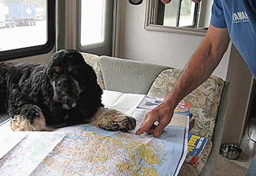 Wrigley is a seven-year-old Cocker Spaniel who shares his family;s adventures traveling the country in a luxury motorhome.